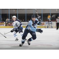 Jack Dougherty of the Milwaukee Admirals vs. the Manitoba Moose