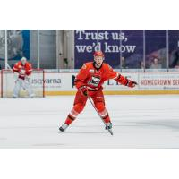 Philip Samuelsson of the Charlotte Checkers