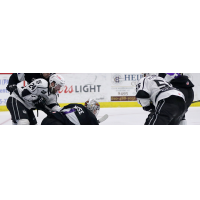 Manchester Monarchs vs. the Reading Royals