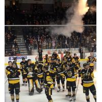 Hamilton Bulldogs celebrate series win