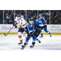 Idaho Steelheads Forward Max French