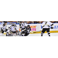 Manchester Monarchs vs. the Wheeling Nailers