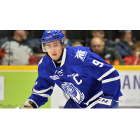 Forward Michael McLeod with the Mississauga Steelheads