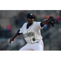Columbia Fireflies Pitcher Tony Dibrell