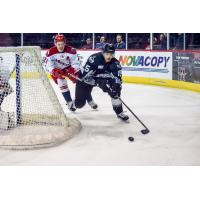 David Makowski of the Allen Americans chases an Idaho Steelheads player behind the Allen net