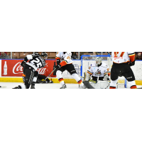 Manchester Monarchs vs. the Adirondack Thunder