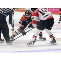 Fort Wayne Komets face off with the Cincinnati Cyclones