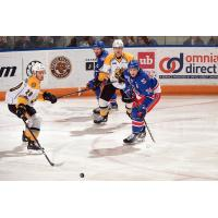 Kitchener Rangers Center Connor Bunnaman vs. the Sarnia Sting