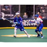 Joe Resetarits of the Rochester Knighthawks vs. the Toronto Rock