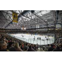 Progressive Auto Sales Arena, home of the Sarnia Sting