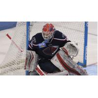 South Carolina Stingrays Goaltender Parker Milner