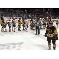 Hamilton Bulldogs and Niagara IceDogs exchange handshakes after playoff series