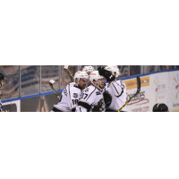 Manchester Monarchs celebrate double-OT playoff win