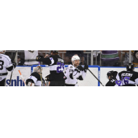 Manchester Monarchs vs. the Reading Royals in Playoff Game 2