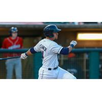Jake Scheiner of the Lakewood BlueClaws