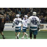 Rochester Knighthawks celebrate a goal