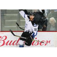AJ White of the Idaho Steelheads celebrates a goal