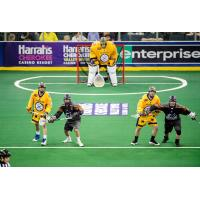 Georgia Swarm in their Cherokee uniforms vs. the New England Black Wolves