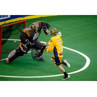 Joel White of the Georgia Swarm shoots past the New England Black Wolves goaltender