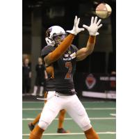 Jamal Miles of the Arizona Rattlers prepares to make a catch