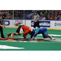 The Buffalo Bandits and Jake Withers of the Rochester Knighthawks battle for possession