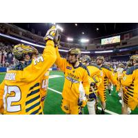 Georgia Swarm celebrates after clinching a playoff berth