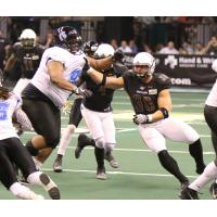 Justin Shirk of the Arizona Rattlers zeros in on a Cedar Rapids Titans ballcarrier