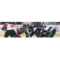 Manchester Monarchs face off with the Adirondack Thunder