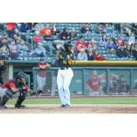 Salt Lake Bees outfielder Jabari Blash awaits a pitch