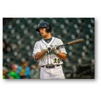 Columbia Fireflies left fielder Raphael Gladu