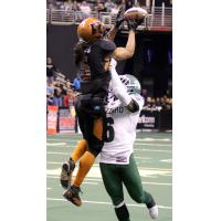 Arizona Rattlers make a catch over the Green Bay Blizzard defense