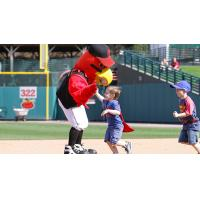 Rochester Red Wings mascot Spikes
