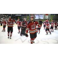 Tucson Roadrunners salute the fans as they leave the ice