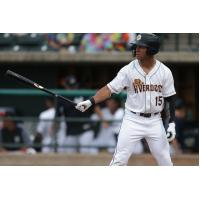 Charleston RiverDogs outfielder Dom Thompson-Williams