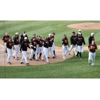 Long Island Ducks walk off with a win