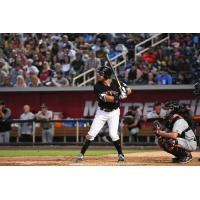 Albuquerque Isotopes outfielder Mike Tauchman