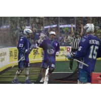 Cody Jamieson of the Rochester Knighthawks after a score