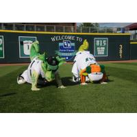 Dayton Dragons Mascots Heater and Gem doing yoga