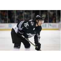 Idaho Steelheads forward Steve McParland