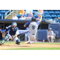 David Thompson scores winning run for the Brooklyn Cyclones