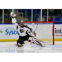 Vancouver Giants goaltender David Tendeck makes a high catch