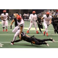 Arizona Rattlers can't bring down a Sioux Falls Storm ballcarrier