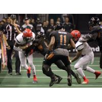 Arizona Rattlers tackle the Sioux Falls Storm