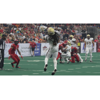 Maine Mammoths receiver Rob Brown