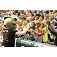 Arizona Rattlers fans and mascot Stryker