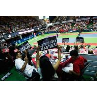 Washington Kastles fans