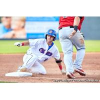 Ottawa Champions slide safely into third