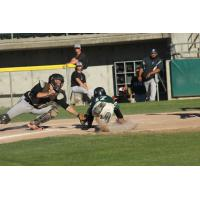 Tommy Ahlstrom of the Medford Rogues dives for home