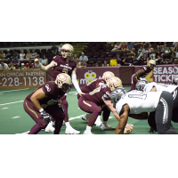 Maine Mammoths offense lines up against the Carolina Cobras