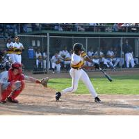 Willmar Stingers at the plate